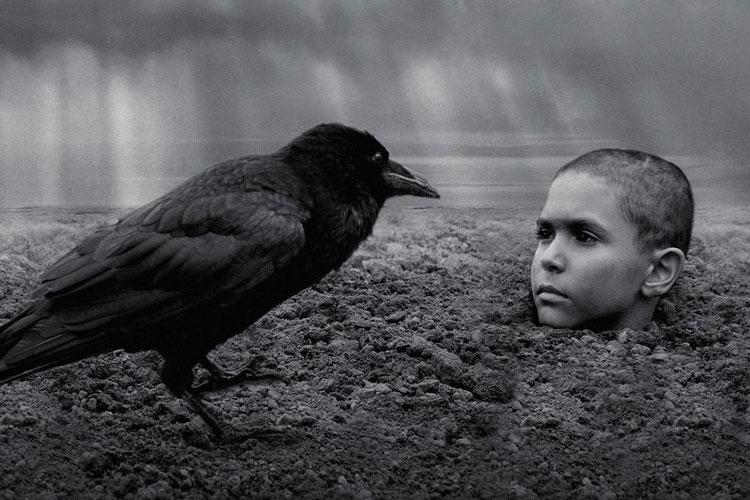 """Na największą frekwencje może liczyć projekcja czarno-białego """"Malowanego ptaka"""" Václava Marhoula według powieści Kosińskiego"""