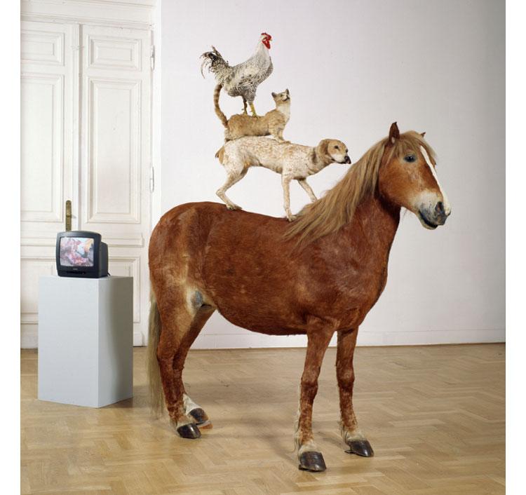"""""""Piramida zwierząt"""", dyplomowa praca Katarzyny Kozyry z 1993 (zbiory Zachęty), kliknij by powiększyć"""