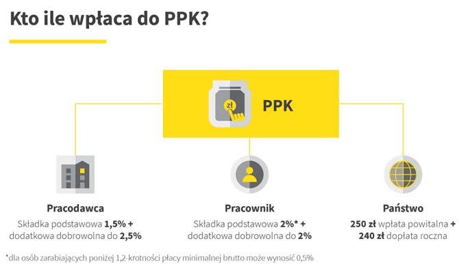 Pracownicze Plany Kapitałowe - kto ile wpłaca do PPK