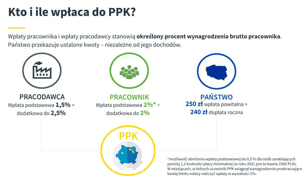 Kto ile wpłaca na PPK (materiał: Aviva)